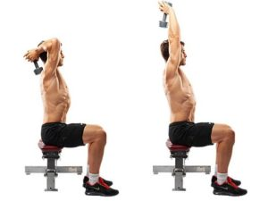 meilleurs exercices Biceps / Triceps