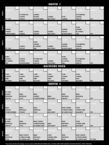 calendrier insanity